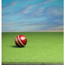 Standard PVC Backed Roll-Up Cricket Wicket